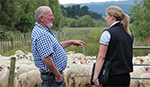 Farmer talking to agricommerce specialist with sheep behind in a paddock