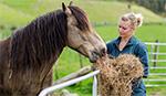 Vet student feeding horse